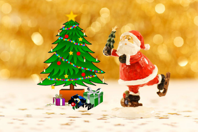 best places to buy a christmas tree in delhi ncr - Best Place To Buy A Christmas Tree